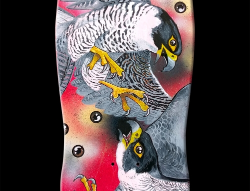 Skateboard deck painting 'Peregrine Eyes' (2016)