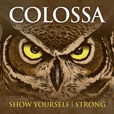2012 12 24 Colossa Owl cover