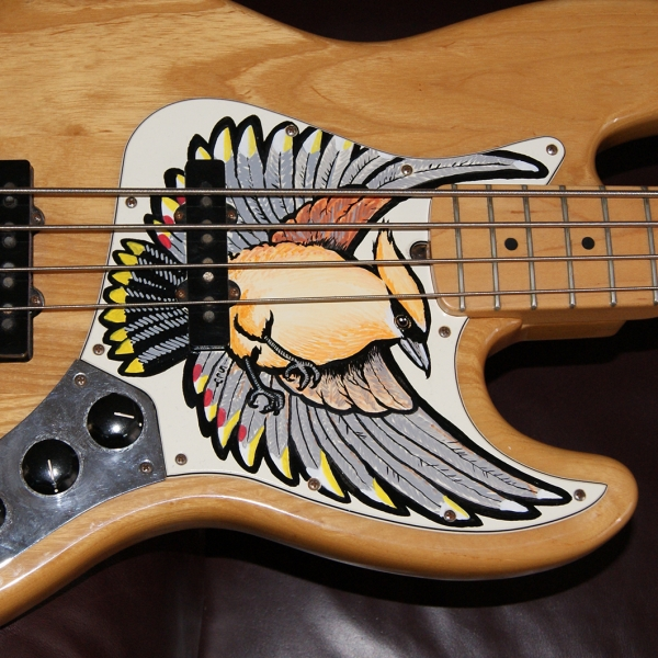2011 01 20 Bas Braam Pickguard