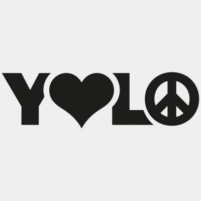 2015 01 26 Yolo Logo