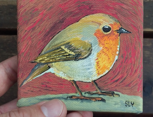 Robin mini canvas [2018]